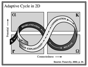Holling's Adaptive Cycle